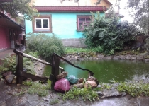 Баня Уют ул. Максимкова, 19, Гатчина