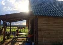 Баня на дровах Волковицы, 1а, Ломоносовский район, Кипенское сельское поселение, деревня Волковицы